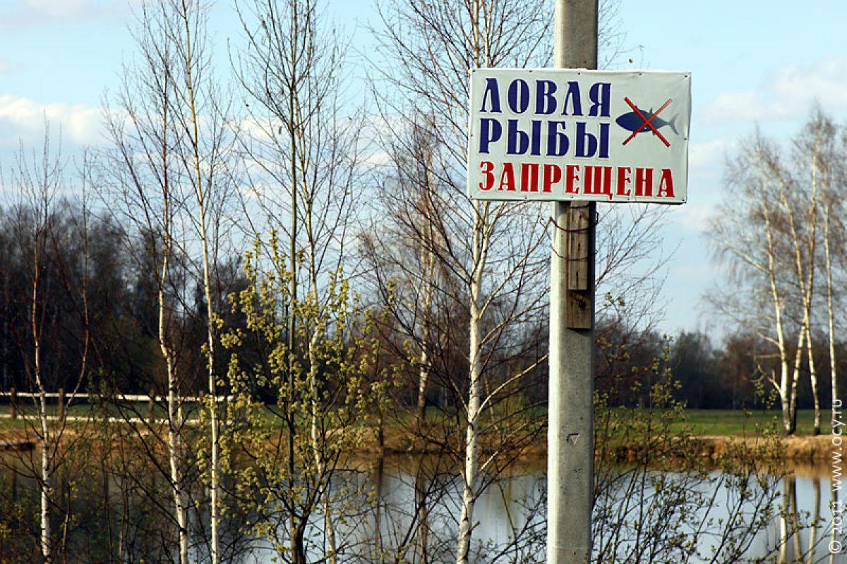когда начинается запрет на рыбалку в 2017 году в беларуси
