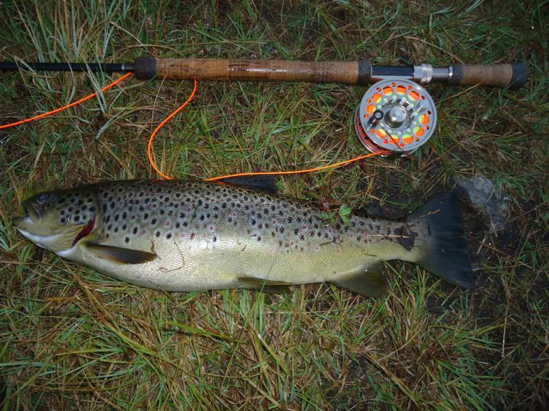рыбалка щука рязань